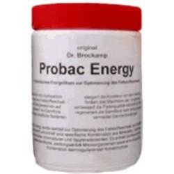 Probac Energy 500g