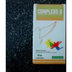 Complexo B 100ml
