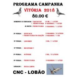 "Programa campanha VITÃ""RIA 2018"